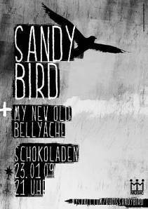 sandybird