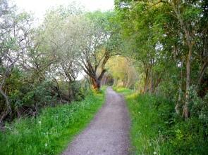 Sehr schöne 8 Kilometer direkt am Fluss entlang.