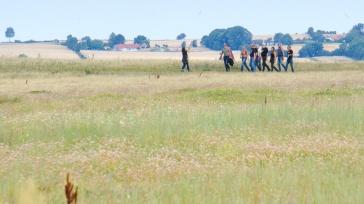 Eine Gruppe von Motorradfahrenden auf der Vogelwiese.